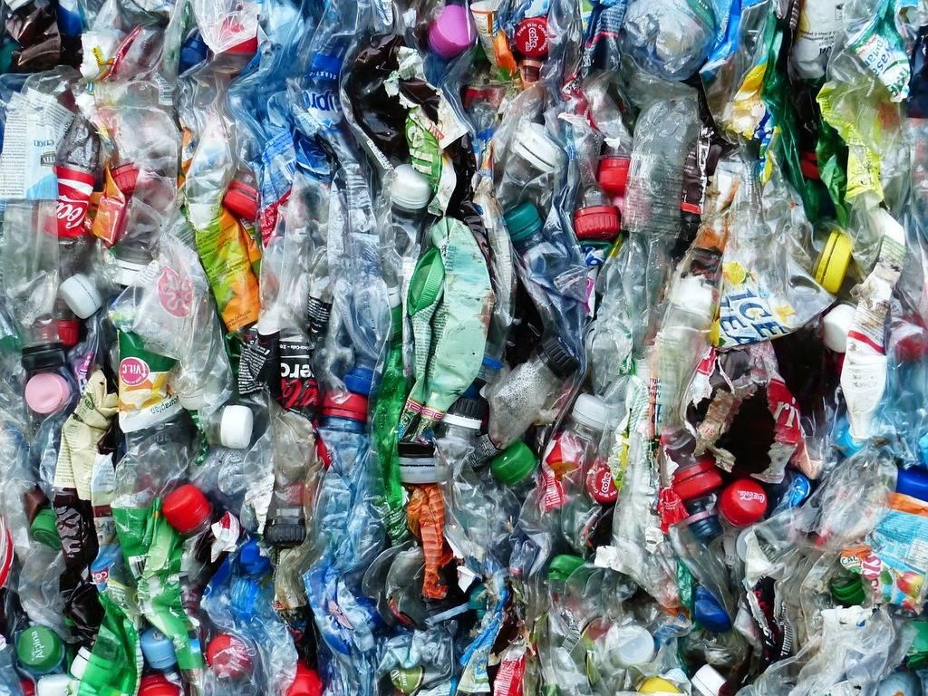 impacts du plastique