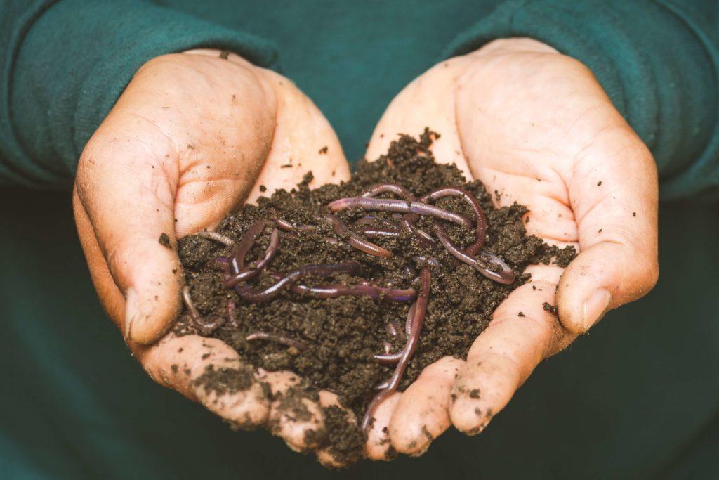 un compost pour limiter les déchets alimentaires