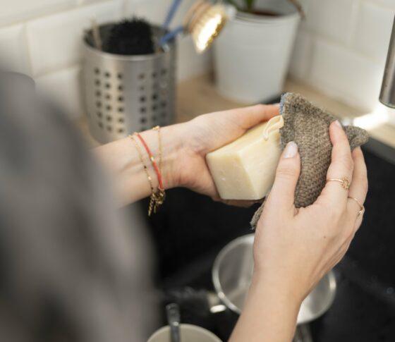 savon vaisselle solide